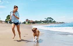 Summer Beach Fun. Woman Running With Dog. Holidays Vacations. Summer