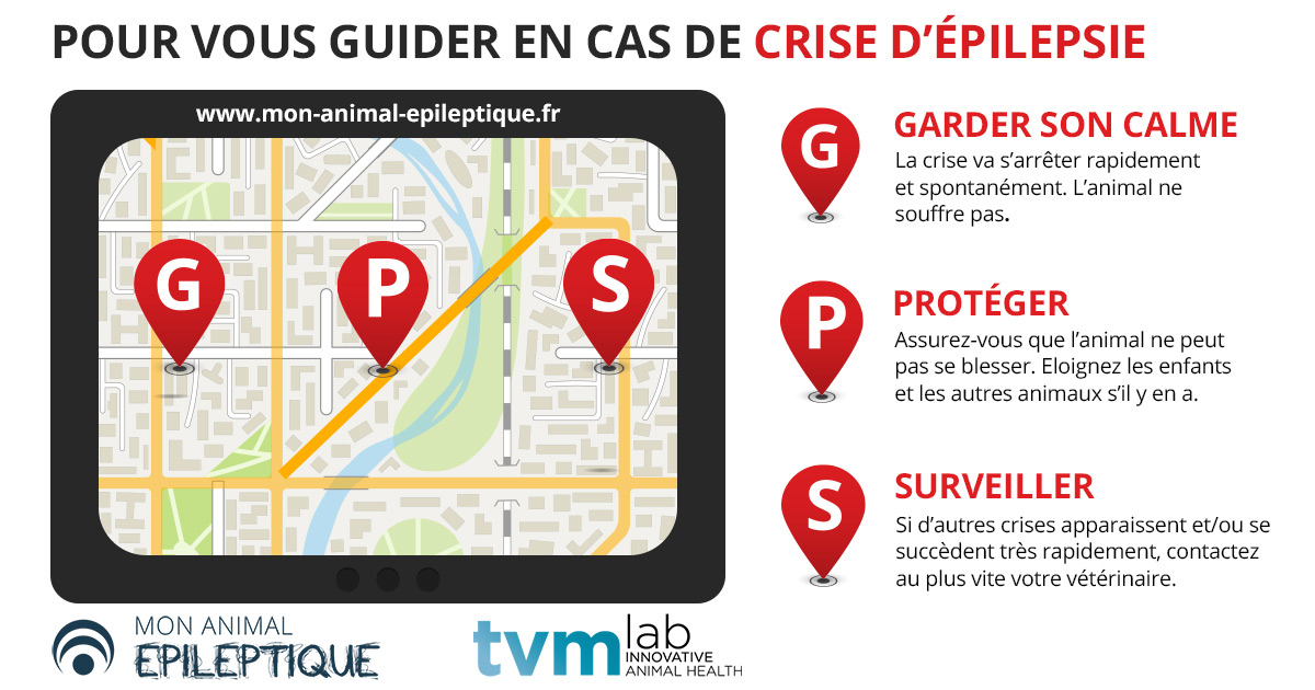 infographie-GPS