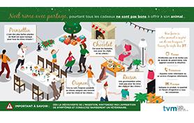 Infographie : attention aux intoxications à Noël !