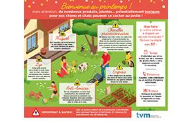 Infographie «Les risques d'intoxication au printemps»
