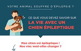 Infographie : La vie avec un chien épileptique
